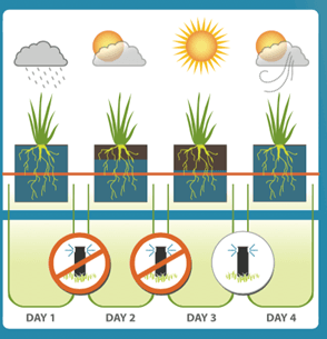 A diagram showing water evaporation